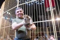 В Тульском цирке родился тигролев, Фото: 26