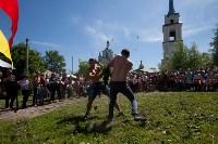 В Тульской области прошел фестиваль крапивы, Фото: 215