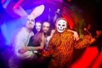 Хэллоуин-2014 в Премьере, Фото: 78
