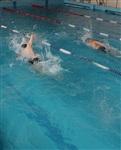 Открытые чемпионат и первенство Тульской области по плаванию на короткой воде, Фото: 5