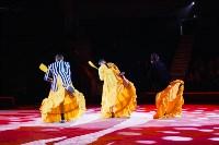 Львы Африки приехали в Тулу, Фото: 76