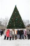 Открытие елки в Центральном парке, Фото: 1