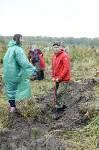 В Веневском районе высажено 24 тысячи сосен, Фото: 12