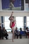 Соревнования по спортивной гимнастике на призы Заслуженных мастеров спорта , Фото: 51
