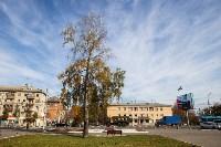 Золотая осень в Туле-2019, Фото: 73