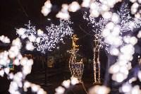 Как украсили Тулу к Новому году, Фото: 3