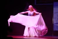 Мисс Тульская область - 2014, Фото: 273