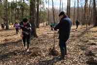 Посадка деревье в Ясной Поляне. 17.04.2015, Фото: 30