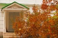 Золотая осень в Туле-2019, Фото: 102