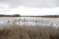 Рыбалка на реке чернь тульской области