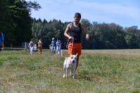 В Ясной поляне стартовал турнир по конному спорту, Фото: 82