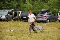 Выставка охотничьих собак под Тулой, Фото: 51