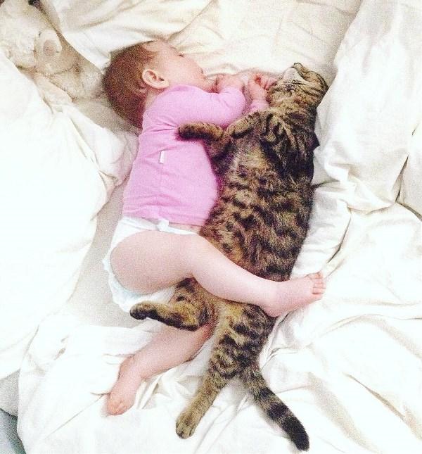 спят усталые.....