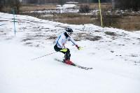 I-й этап Кубка Тулы по горным лыжам и сноуборду., Фото: 20