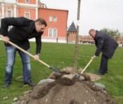 Члены правительства региона высадили аллею в кремле, Фото: 3