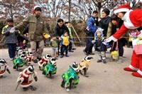 Рождественские пингвины, Фото: 4