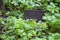 Кладбище домашних животных в Туле, Фото: 65