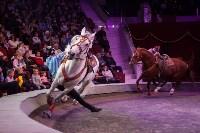 """""""Тайна пирата"""" в Тульском цирке, Фото: 65"""