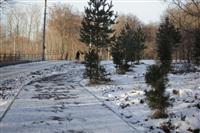 Центральный парк культуры и отдыха им. Белоусова. Декабрь 2013, Фото: 2