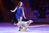Цирковое шоу, Фото: 45
