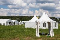 «Дикая мята» состоится! Что ждет гостей на фестивале, Фото: 12