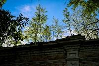 Фестиваль крапивы: пятьдесят оттенков лета!, Фото: 113
