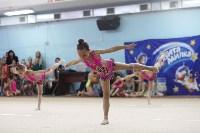 Соревнования «Первые шаги в художественной гимнастике», Фото: 76