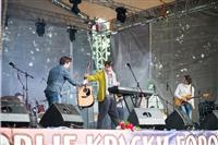 Фестиваль Крапивы - 2014, Фото: 2