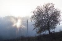 Центральный парк, утро, осень, Фото: 11