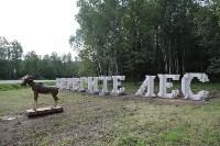 """Арт-объект """"Берегите лес"""" на въезде в Тулу, Фото: 6"""