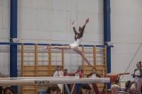 Первенство ЦФО по спортивной гимнастике, Фото: 166