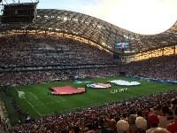 Туляки на Евро-2016, Фото: 5