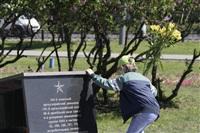 Празднование 69-й годовщины победы в Великой Отечественной войне на площади Победы. Тула, Фото: 85
