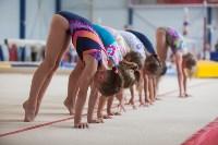 Тульские гимнастки готовятся к первенству России, Фото: 24