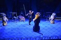 Цирковое шоу, Фото: 142