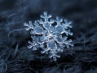 Макрофотографии снежинок, Фото: 9