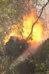 Пожар около Фролова, Фото: 11