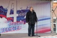 День народного единства в Тульском кремле, Фото: 66