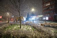 Апрельский снегопад - 2021, Фото: 97