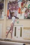 Первенство ЦФО по спортивной гимнастике, Фото: 181