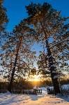 Снежное Поленово, Фото: 58