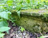 Всехсвятское кладбище. Июль 2016, Фото: 12