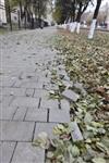 Ремонт тротуаров к Эстафете Олимпийского огня, Фото: 8