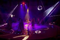 Шоу фонтанов «13 месяцев» в Тульском цирке – подарите себе и близким путевку в сказку!, Фото: 94