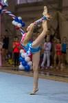 Соревнования по художественной гимнастике 31 марта-1 апреля 2016 года, Фото: 56