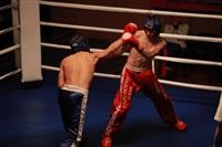 В Туле прошла матчевая встреча звезд кикбоксинга, Фото: 54