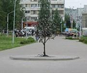 """Кованая вишня в сквере """"Тульское чаепитие"""", Фото: 1"""