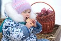 Как туляки провожали зиму на набережной Упы, Фото: 55