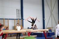 Региональное первенство по спортивной гимнастике. 20 -22 марта 2014, Фото: 10