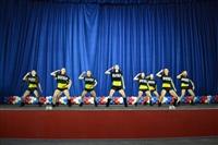 Открытый Чемпионат Тульской области по черлидингу, Фото: 19